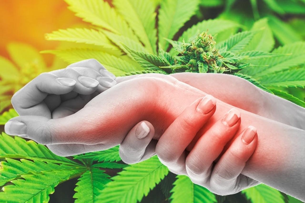 https://drlv.org//images/easyblog_articles/350/a1sx2_neu_Wie-kann-Cannabis-chronische-Schmerzen-behandeln.jpg