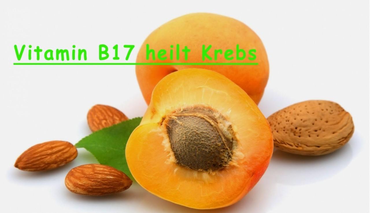 Krebs Bekämpfen Vitamin B17 Amazon